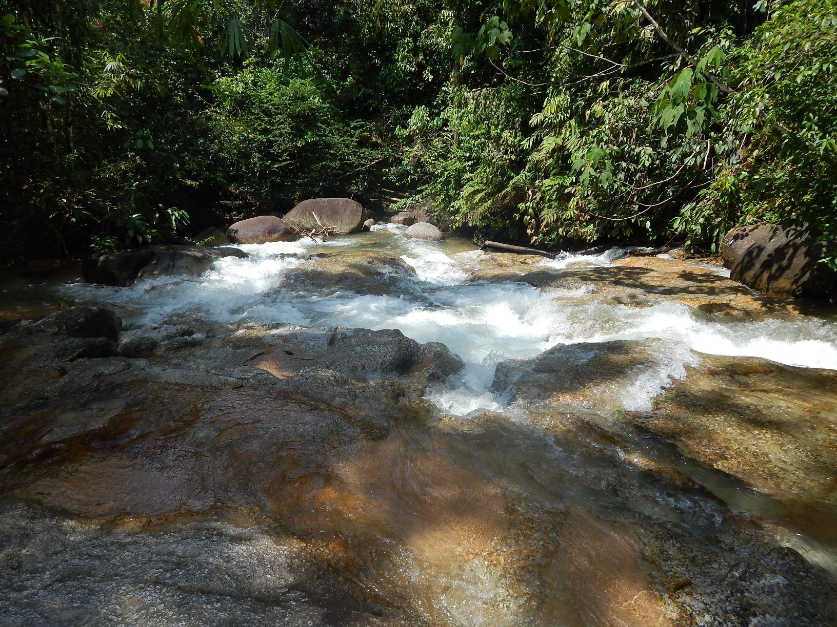 Clean water source from Gunung Inas | SAM