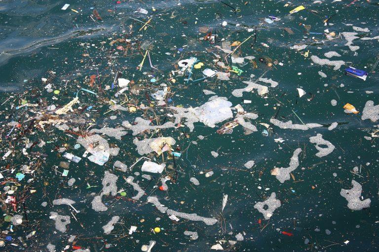 sea, oats, garbage-1017596.jpg